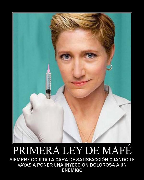 PRIMERA LEY DE MAFE